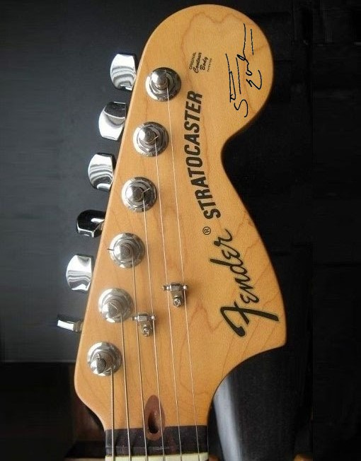 Steve Earle Headstock